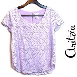 Aritzia Talula  lavender lace short sleeve top